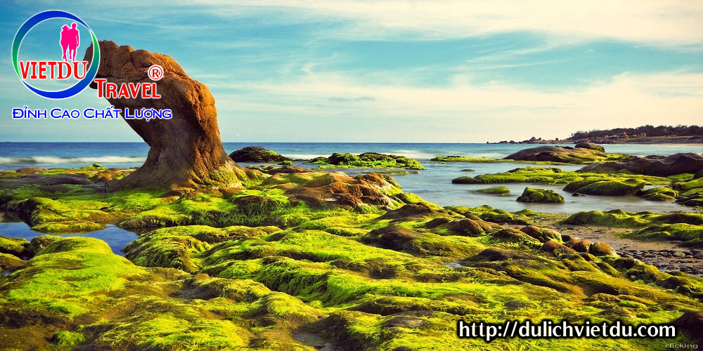 Biển Cổ Thạch – Điểm du lịch tại Phan Thiết hấp dẫn